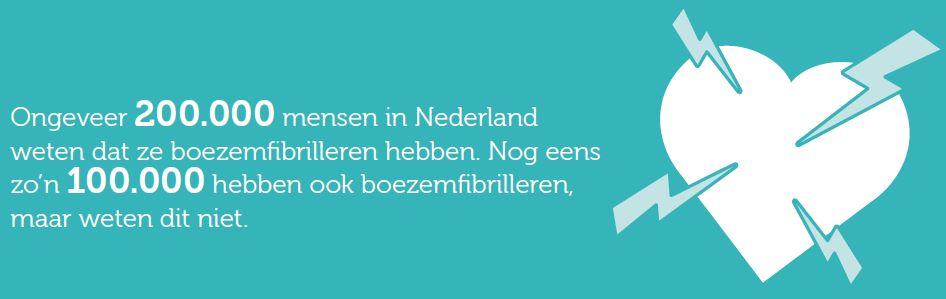 boezemfibrilleren-in-nederland