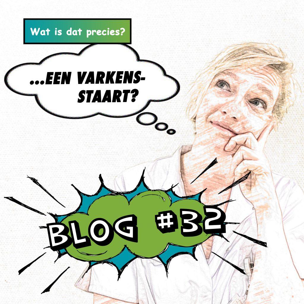 Blog 32 van Wilma